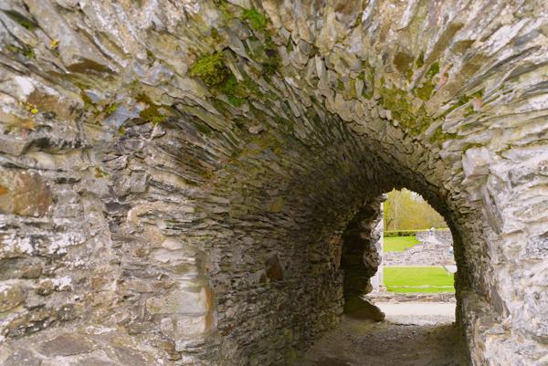 mellifont-abbey