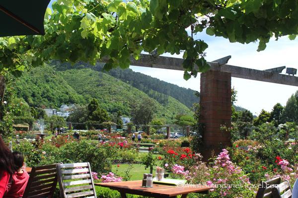 Cafe at the Wellington Botanical Garden