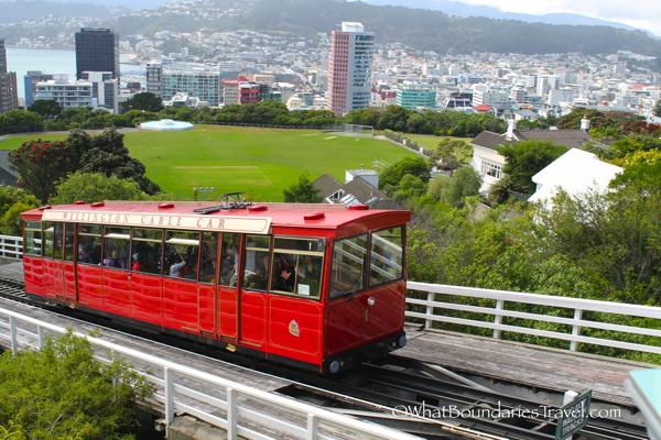 Amazing views from the Wellington Cable Car
