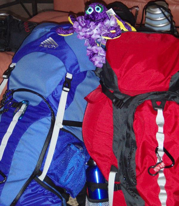 Which Backpack is Right for You?