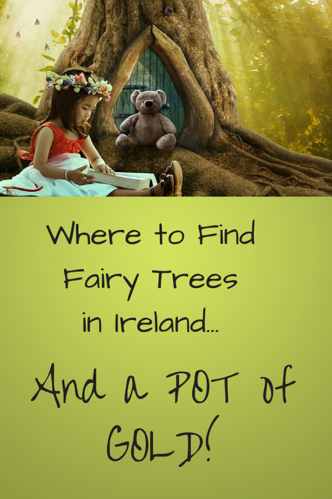 fairy trees ireland