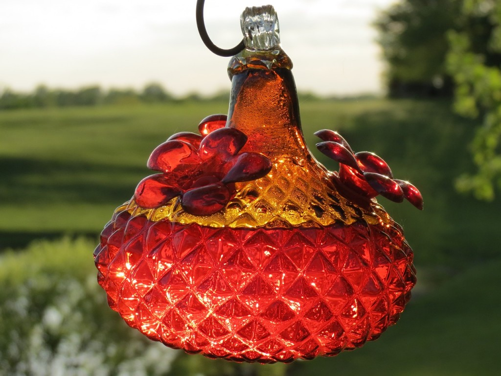 Best Hummingbird Feeders
